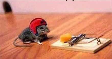 risks_mouse